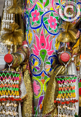 Trunk and sawn-off tusks of highly decorated elephant, Jaipur festival, India
