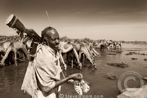 Man with rifle and Arabian Camel s, Afar, Ethiopia