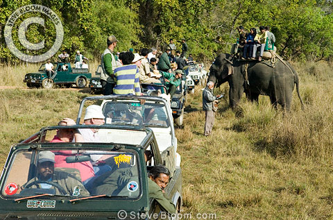 Tourist trail, Bandhavgarh National Park, India