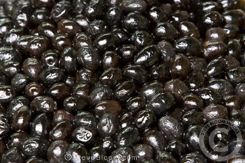 Black olives for sale in the Djemaa el Fna souq in Marrakech, Morocco