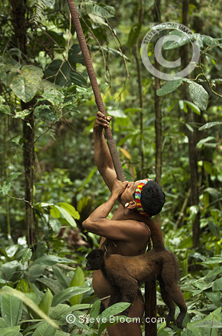 Huaorani Hunting