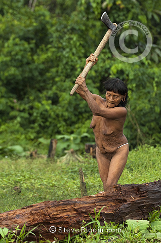 Huaorani Indian woman - Dabe Baiwa chopping fire wood. Gabaro Community, Yasuni National Park, Amazon rainforest, Ecuador, South America.