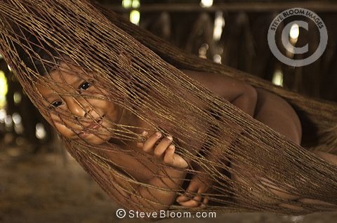 huaorani indian child in hammock  gabaro  munity yasuni national park amazon rainforest ecuador south america  indian child in hammock  gabaro  munity yasuni national park      rh   stevebloom
