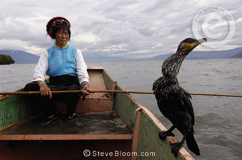 Bai Cormorant fisherman on Erhai lake, Dali Yunnan Province, China