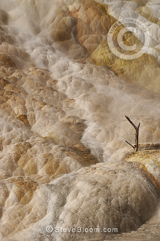 Mammoth Hot Springs with its multihued terraces, Yellowstone National Park, Wyoming, USA