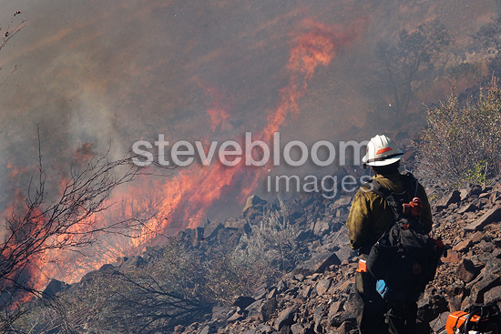 A member of the Wolf Creek Hotshot Crew watches fire run up a grassy slope on the Brown Road Fire, Oregon, USA, July 2011