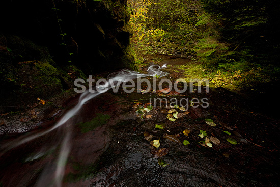 A long exposure blurs a thin waterfall, western Oregon, USA