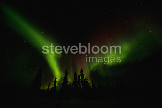 Northern lights, Wapusk National Park, Manitoba, Canada.