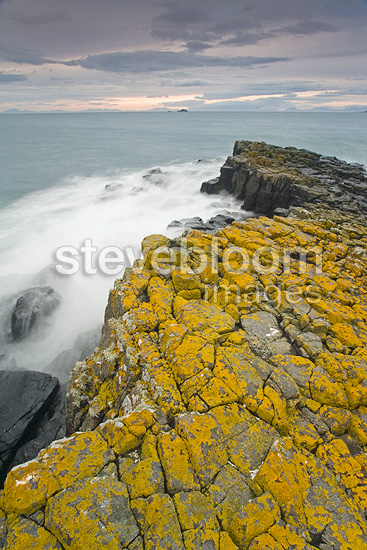 Coastal basaltic organs covered with lichens Scotland