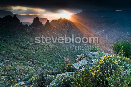 Spring view of valley in the Gran Canaria island