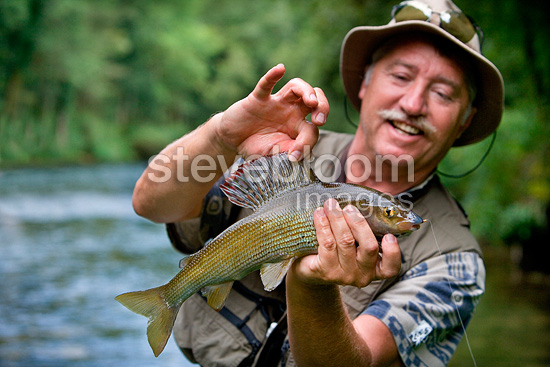 Presentation of an European Grayling High Loue River France (European grayling)