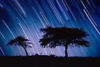 Long exposure of night sky with stars, Namibia