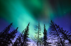 Aurora Borealis(Northern Lights), Churchill, Manitoba, Canada
