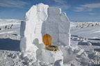 Open-air toilet built from blocks of snow and with fur-lined seat, temperature below minus 30 degrees Fahrenheit, Manitoba, Canada