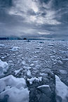 Ice floes, Antarctica