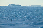 Ice floes, Cape Adare, Antarctica