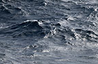 Grey waters of the Southern Ocean