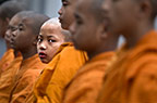 Young Buddhist monks in buddhist temple, Mahabodhi Society Temple of Buddha, Sarnath, India.
