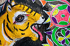 Painted elephant with eye of elephant representing tiger's eye, Elephant Festival, Jaipur, India