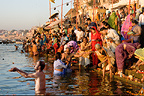 Hindu devotees bathing in the Ganges, Varanasi, India