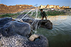 Mahout washing an elephant in the river below the Amber Fort, Jaipur, India
