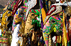 Elephants painted and decorated in preparation for the Elephant Festival, Jaipur, India