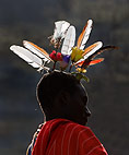 Close up of the feathered headdress of a Samburu tribesman attending ritual circumcision. Mount Nyiru, Kenya, Africa