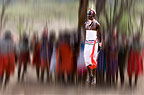 Samburu tribesman dancing to celebrate the mass circumcision of the young men of the tribe, Mount Nyiru, Kenya, Africa