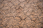 Dry, cracked earth, Chalbi desert, Northern Kenya, Africa