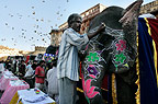 Elephants lined up, being decorated for the elephant festival, Jaipur, India