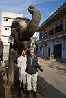 Steve Bloom and elephant, Jaipur, India