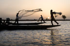 Bozo fishermen using nets on the River Niger, Mopti, Mali