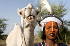 Wodaabe tribesman with his camel dressed for the Gerewol festival, north of Abalak, Niger