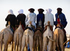 Tuareg men on their camels at the Gerewol Festival, north of Abalak, Niger