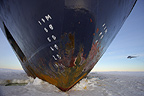 Hull of icebreaker on ice, with helicopter, October, Weddell Sea, Antarctica.