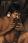 Huaorani Indian, Mipo Wira, eating a peccary leg. Gabaro Community, Yasuni National Park, Amazon rainforest, Ecuador, South America.