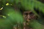 Huaorani Indian, Mipo Wira. Gabaro Community, Yasuni National Park, Amazon rainforest, Ecuador, South America.