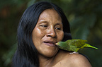 Huaorani Indian woman,Wenyena Baiwa, with her pet Cobalt-winged Parakeet (Brotogeris cyanoptera). Gabaro Community, Yasuni National Park, Amazon rainforest, Ecuador, South America.