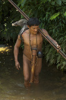 Huaorani Indian, Ontagamo Kaimo carrying a peccary that he hunted. Gabaro Community, Yasuni National Park, Amazon rainforest, Ecuador, South America.