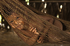 Huaorani Indian child in hammock. Gabaro Community, Yasuni National Park, Amazon rainforest, Ecuador, South America.