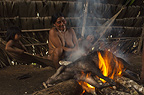 Huaorani Indian burning the hair off of a peccary before cutting it up to either boil or smoke it. Bameno Community, Yasuni National Park, Amazon rainforest, Ecuador, South America.