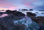 A full moon sets as the sun rises over the amazing rock formations, Seal Rocks State Park, Oregon, USA