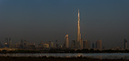 Greater Flamingos feeding and the sun catching the Burj Khalifa, Dubai, United Arab Emirates