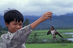 Child playing with a swallow tied to a piece of string