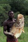 Nile perch caught with an assegai, Central African Republic