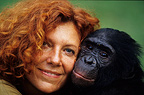 Claudine André and a  Bonobo, DR Congo