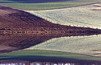 Fields with their reflections in a reservoir Marsolan France
