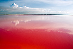 Red lake Rio Lagartos close to the Saltworks Mexico