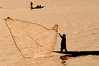 Casting-net fishing on the Niger river Mali