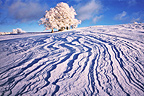 Snow sculpted by wind on the plateau of Retord France